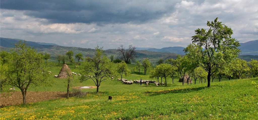Megica-Land-of-Angels-Mehadica-Carsa-Severin-romania