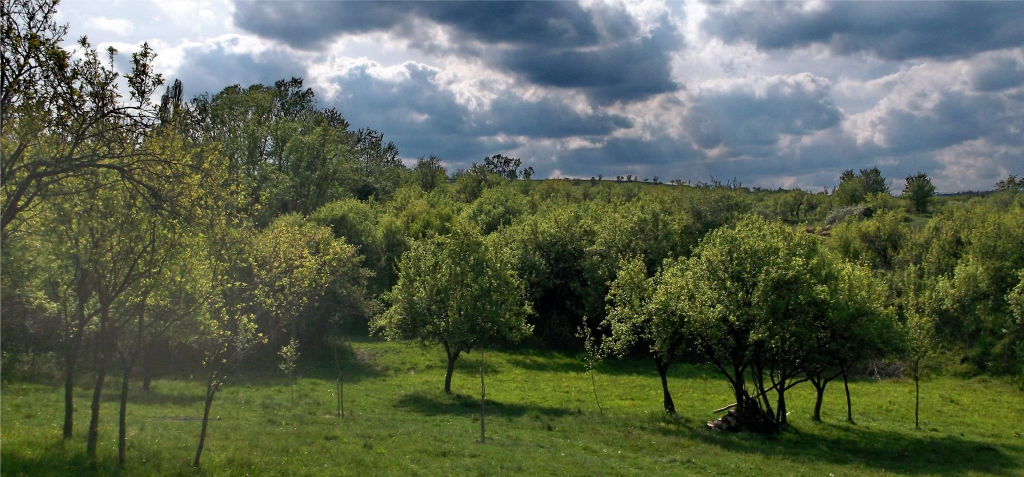 Megica-Land-of-Angels-Mehadica-Carsa-Severin-romania1