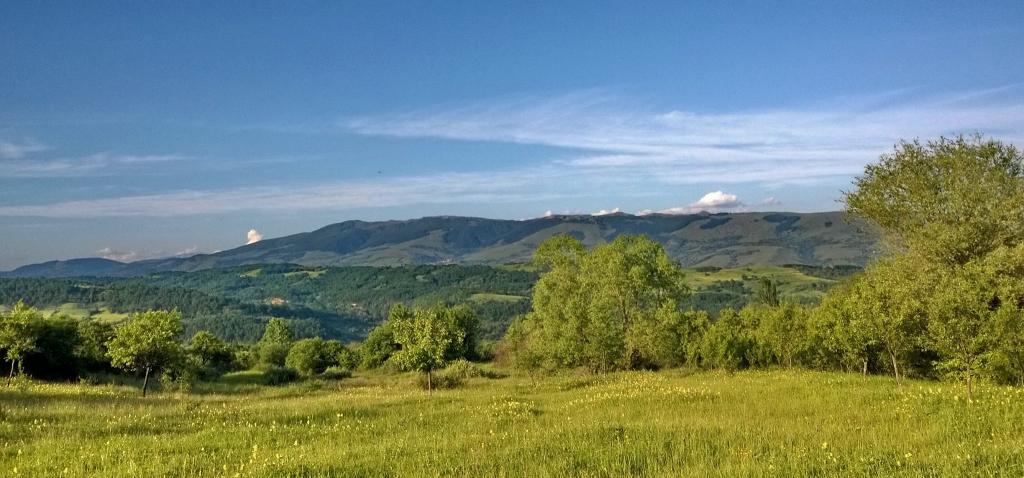 Megica-Land-of-Angels-Mehadica-Carsa-Severin-romania3